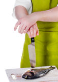Chef  with a  knife Royalty Free Stock Image