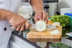 Chef-kok Chopping Onion royalty-vrije stock foto
