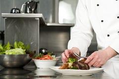 Chef-kok die maaltijd voorbereiden Royalty-vrije Stock Foto