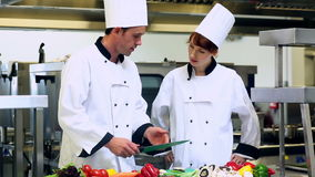 Chef-kok die tonen hoe te groenten te hakken stock video