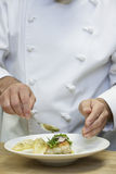 Chef-kok Garnishing Food stock foto