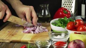 Chef-kokknipsel omhoog een ui met een mes stock footage