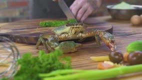 Chef-kokkok die ingrediënt voor Italiaanse deegwaren met zeevruchten in restaurant voorbereiden Kok die levende krab voor binnen  stock footage