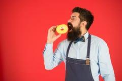 Chef-kokmens in koffie Voedselcalorie Gebaarde Mens in Schort Dieet en gezond voedsel Baker greepdoughnut Grappige hipster calori royalty-vrije stock foto's