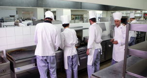 Chef-koks aan het werk in een bezige keuken stock videobeelden