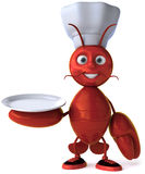 Chef lobster Stock Images
