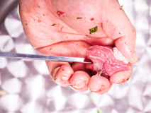 A chef making shish kebab of red meat Stock Images