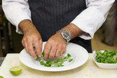 Chef is mixing salad Royalty Free Stock Photos
