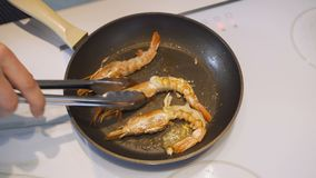 Chef is mixing the shrimps in a frying pan, close-up. stock video