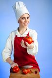 Chef offer tomatoes Royalty Free Stock Image
