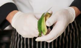 Chef is peeling avocado Stock Image