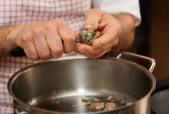 Chef is peeling clams Stock Photography