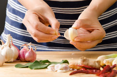 Chef peeling garlic by hand Royalty Free Stock Photography