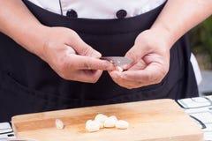 Chef is peeling garlic / Stock Image