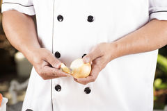 Chef peeling the onion Stock Photography