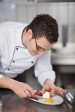 Chef Placing Icecream In Garnished Plate Royalty Free Stock Photo