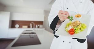 Chef with plate of food against blurry kitchen Stock Images