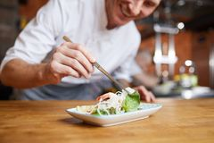 Chef Plating Gourmet Dish Closeup. Closeup of professional chef plating Asian dish in restaurant kitchen, copy space royalty free stock photos