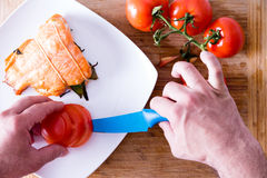 Chef plating up a gourmet salmon dinner Stock Photography