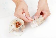 Chef prepares fresh eel rolls Stock Image