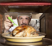 Chef prepares roast little chicken in the oven Stock Images