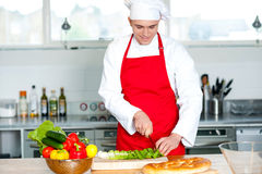 Chef preparing the dish Royalty Free Stock Photo