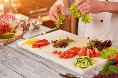 Chef preparing food at professional kitchen. Royalty Free Stock Photography