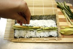 Chef preparing maki sushi by rolling nori seaweed,rice and fish on makisu bamboo mat. royalty free stock photo