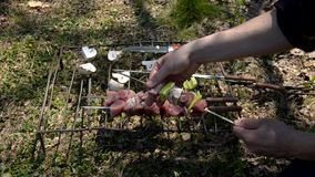 Chef preparing meat and vegetables for baking stock video footage