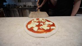 Chef preparing pizza with cheese stock footage