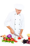 Chef preparing salad Stock Photography