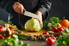 Chef preparing to slice a fresh cabbage stock photography