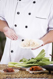 Chef present noodle with noodle ingredient Stock Photography