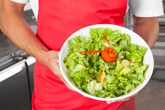 Chef Presenting Salad In Kitchen. Midsection of male chef presenting salad in restaurant kitchen Stock Images