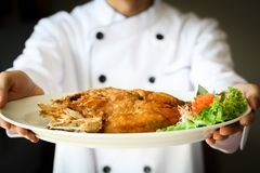 Chef proudly presenting Fried sea bass fish on white plate Royalty Free Stock Image