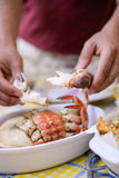 Chef pulling delicious cooked crab white meat out Royalty Free Stock Photography