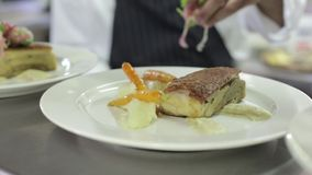 Chef Puts Garnish on Food stock video footage