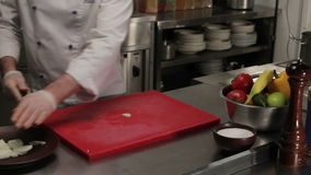 Chef putting half rings of onion into a plate, medium shot. Chef in restaurant putting onion into a plate, onion is chopped into half rings, medium shot stock footage