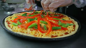 Chef putting paprika on pizza stock video footage