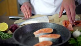 Chef putting salmon fish on pan for cooking stock video footage