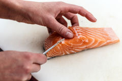 Chef removing fish bone from salmon Stock Photography