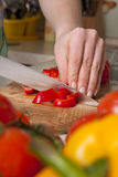 Chef's hands cutting vegetables. Stock Photography