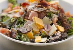 Chef S Salad Stock Image