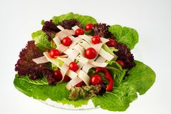Chef's Salad - view 4. A delicious Chef's Salad with fresh Romaine and Red Leaf lettuce, Red Pepper, Cherry Tomatoes, Thin Sliced Turkey, and Swiss Cheese royalty free stock image