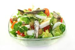 Chef salad Royalty Free Stock Photography