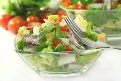 Chef salad Royalty Free Stock Photos