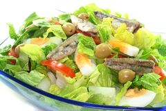 Chef salad with anchovies Royalty Free Stock Images