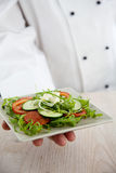 Chef with salad Royalty Free Stock Photo