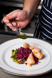 Chef season delicious meal. With herb sauce Royalty Free Stock Photography