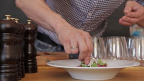 Chef serves to feed stock footage